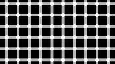 Cuando te fijas en una intersección entre líneas blancas, ¿verdad que parece que hay una serie de puntos negros que aparecen o desaparecen en el resto de la imagen?