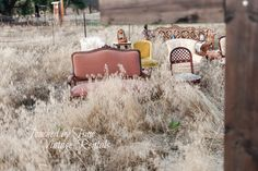 Touched by Time Vintage Rentals...A Little Love on the Prairie... Ceremony Seating, Vintage Chairs, Wedding Shoot, Love, Amor