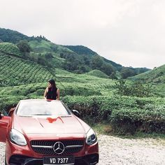 Took this red AMG beast up to Cameron Highlands on winding roads and through beautiful tea plantations. How's riding the @mercedesbenzmalaysia SLC 300 for a hump day delight? #mymbdreamcar  via HARPER'S BAZAAR MALAYSIA MAGAZINE OFFICIAL INSTAGRAM - Fashion Campaigns  Haute Couture  Advertising  Editorial Photography  Magazine Cover Designs  Supermodels  Runway Models