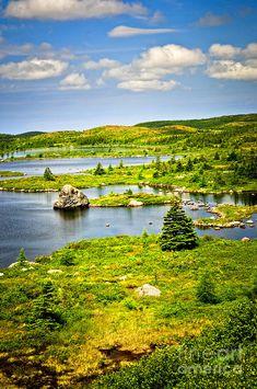 ✮ Newfoundland, Canada