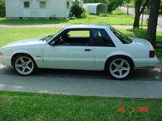 5.0L Fox (White) Mustang