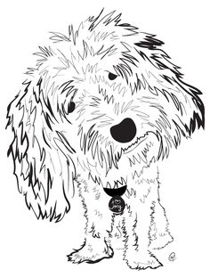 Cockapoo -- Charity Pups raises awareness and dollars for a different animal-related non-profit each month through dog illustrations. www.charitypups.com #dog #illustration #cute #adorable #puppy #mixedbreed #mixbreed #mutt #cockapoo