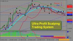 sistem perdagangan tren forex profesional