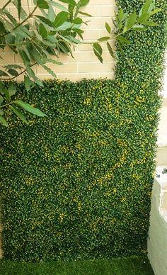 #Sintetico #Artificial para exterior. #verticalymusgo #Somos #Musgo #Moss #Liquen #Verticales #Decoración #musgomanía Artificial, How To Dry Basil, Herbs, Vegetables, Vertical Gardens, Proposal, Spaces, Herb, Veggie Food