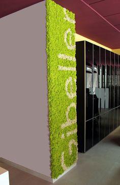 liquen pistachio y polar creando la imagen corporativa de Gibeller.  En Murcia