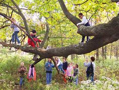 'risk and reward in nature play' article by ken finch