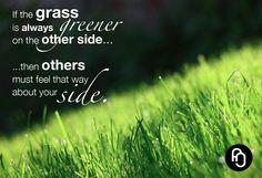 focusNjoy #20: The grass is always green