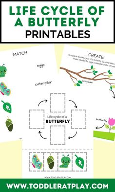 This Life Cycle of a Butterfly Printable includes 5 pages of fun, butterfly-themed activities. With these printables, kids will familiarize with the life cycle of a butterfly and more! #butterflylifecycle #kidsprintables #homeschoolprintables Activities For 2 Year Olds, Indoor Activities For Kids, Spring Activities, Toddler Activities, Nursery Activities, Preschool Activities, Butterfly Life Cycle, Preschool Printables, Help Kids