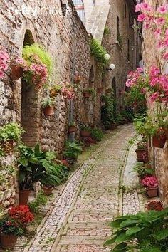Beautiful!: