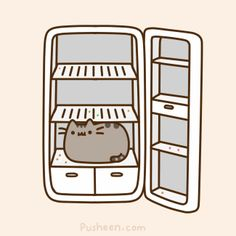Pusheen ate all the food!