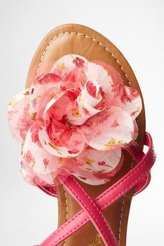 HauteLook: Anna pink shoes