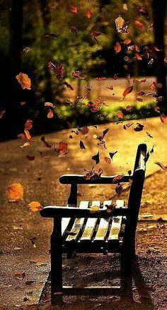 Wind  #fallfavoritesKM