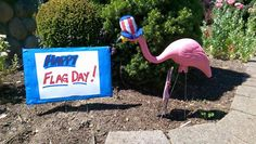 Pink Flamingo Flag Day