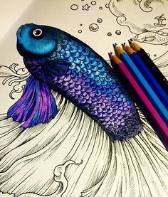 "Puts me and my ""adult coloring book to shame. --> If you're in the market for the best adult coloring books and supplies including colored pencils, drawing markers, gel pens and watercolors, visit ou (Best Paint Pens) Pen And Watercolor, Watercolor Pencils, Adult Coloring, Coloring Books, Coloring Tips, Coloring Sheets, Pencil Drawing Tutorials, Drawing Ideas, Drawing Tips"