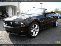 Mustang, Mustang, Mustang!!!  Someday you WILL be mine.....ahhhh