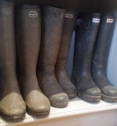 Is anyone else a big Wellington Boot fan like me? I have seemed to have so many wellies although to be fair I do spend more than half my life with them on! Some people like bags I like wellies .. Time to walk my darling Barns. He has been such a good little chap with all the comings and goings today.. Better wrap up its getting mighty cold outside...#wellingtons #hunters #lechameau #walkingthedog #barbour