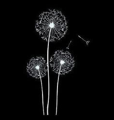 Make a wish Overlays Instagram, Overlays Tumblr, Tumblr Transparents, Picsart Tutorial, Pretty Images, Cute Little Things, I Wallpaper, Chalkboard Art, Quote Prints