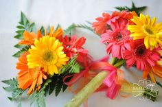 wedding bouquets with gerber daisies | Wedding Bouquets