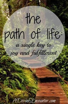 A must-read for Christians! Uplifting post examining the key to joy and fulfillment in life. (Psalm 16:11) http://adivineencounter.com/monday-minute-the-path-of-life