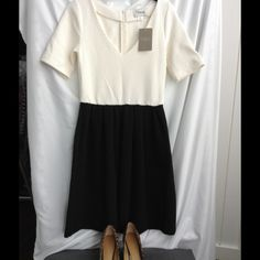 NWT Anthropologie black and cream cotton dress Short sleeve, black and cream dress with back zipper. NWT from Anthropologie. 95% cotton /5% elastane. Anthropologie Dresses