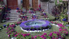 Viterbo San pellegrino in fiore