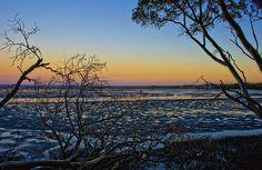 Dusk in the mangroves by Amanda Thepanda, via 365 Photo, I Am The One, Beach Walk, After School, Dusk, Love Her, Amanda, Explore, Sunset