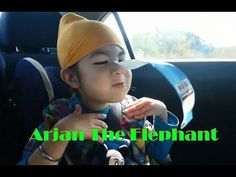 Elephant Arjan