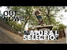 NATURAL SELECTION OUT NOW!!! - http://DAILYSKATETUBE.COM/natural-selection-out-now/