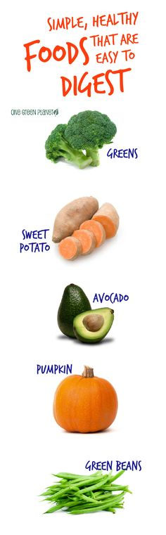 Healthy Foods that are Easy to Digest