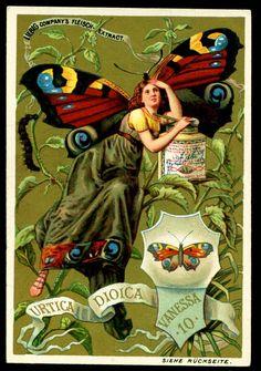 Liebig Trading Card, 1890