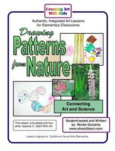 Drawing Patterns from Nature - a science-connected observation drawing art lesson.