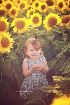 Jana's Creations~Sunflowers