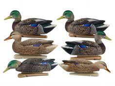 Avian-X Early Season Mallard Pack