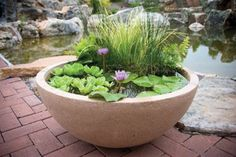 How to DIY Mini Garden Pond in a Container 4 Outdoor Gardens, Patio Pond, Patio Planters, Pond Landscaping, Garden Pond, Ponds Backyard, Backyard Playground, Backyard Patio, Planter Pots