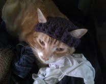 """materials: worsted weight yarn size """"I"""" hook notes:  with no changes, this pattern fits my large orange cat perfectly (he ..."""