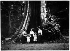 Pauline Johnson,on the right at Stanley Park Hollow Tree, 1904 Vancouver Bc Canada, Stanley Park, Photographic Studio, Time Capsule, Historical Pictures, History Facts, British Columbia, Vintage Photos, Past