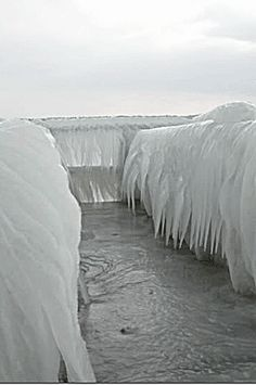 The Worst Ice Storm Ever | The second Was A terrible ice storm http://www.dayoopers.com/gallery ...