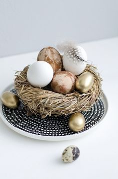 eggs dyeing with natural dyes