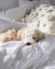 Sweet dreams is right #anthrohome