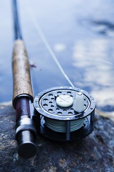 """In fishing, trout are one of the favorite """"fishing friends"""" of most anglers. These crafty fish are abundant anywhere. The native habitat of these crafty fish. Trout Fishing Tips, Fly Fishing Gear, Gone Fishing, Bass Fishing, Fishing Rods, Fishing Stuff, Fishing Tackle, Fishing Photography, Fly Reels"""