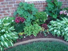 In her garden she put azaleas, hostas, hollyhocks, lilies, coleus, and impatiens.