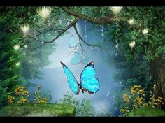"""Songs : Yoga Music Peaceful Music, Relaxing Music, Instrumental Music """"Enchanted Forest"""" by Tim Janis - Fitness & Diets : Move it Or Lose It source for fitness Motivation & News Meditation Musik, Easy Meditation, Relaxing Gif, Relaxing Music, Magical Forest, Beautiful Forest, Instrument Music, Musical Instruments, Native American Music"""