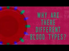 It's often said that despite humanity's many  conflicts, we all bleed the same blood. It's a nice thought, but not  quite accurate. In fact, our blood comes in a few different varieties.  Natalie S. Hodge defines the four major blood types and sheds light on why  some bloods can mix while others cannot.