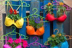 Jardines creativos: 12 objetos reciclados convertidos en maceta: Macetas colgantes de sostenes reciclados