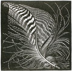 'Teal Feather' woodcut by Colin See-Paynton. http://www.see-paynton.co.uk/. Tags: Linocut, Cut, Print, Linoleum, Lino, Carving, Block, Woodcut, Helen Elstone.