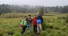 Damaris, Daniel, Irma y Hugo en el Llano de Nahualac