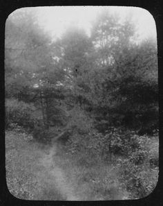 """the old bay path, 1900. """"well before the pilgrims landed, the native americans of southeastern massachusetts had an extensive network of  well-worn trails, among them the old bay path shown [here]...  by 1637, the colonists had adopted the bay path as the main highway through kingston. eventually the route became a private road for the bradfords, then reverted back to a foot path..."""""""