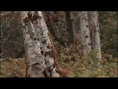 ILHA das SOMBRAS (Dublado) Suspense -  Filme Completo