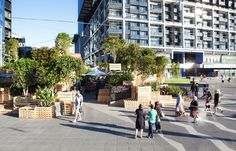 A Large-Scale Pop-Up Coffee Farm In The Heart Of Melbourne