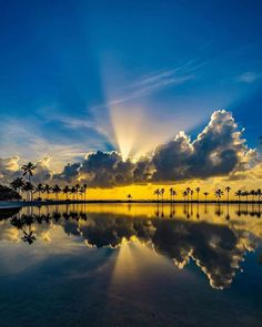 Sunset Photography, Landscape Photography, Amazing Photography, Miami Sunset, Aim In Life, Lake Water, France, Paris, Places Around The World